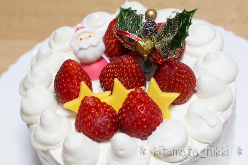 IMG_9951-nova-christmas
