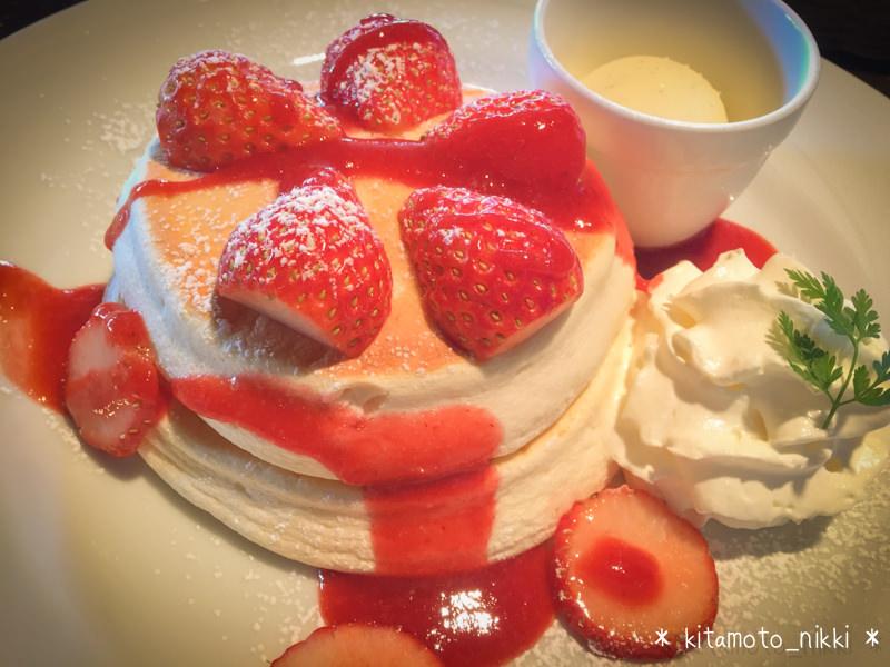 【桶川・カフェ】ドッグカフェ「N36°」の超絶ふわっふわパンケーキ!