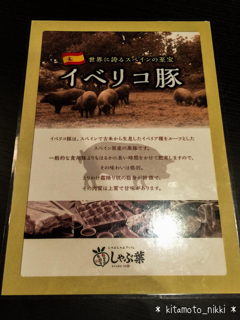 IMG_9731-shabuyo