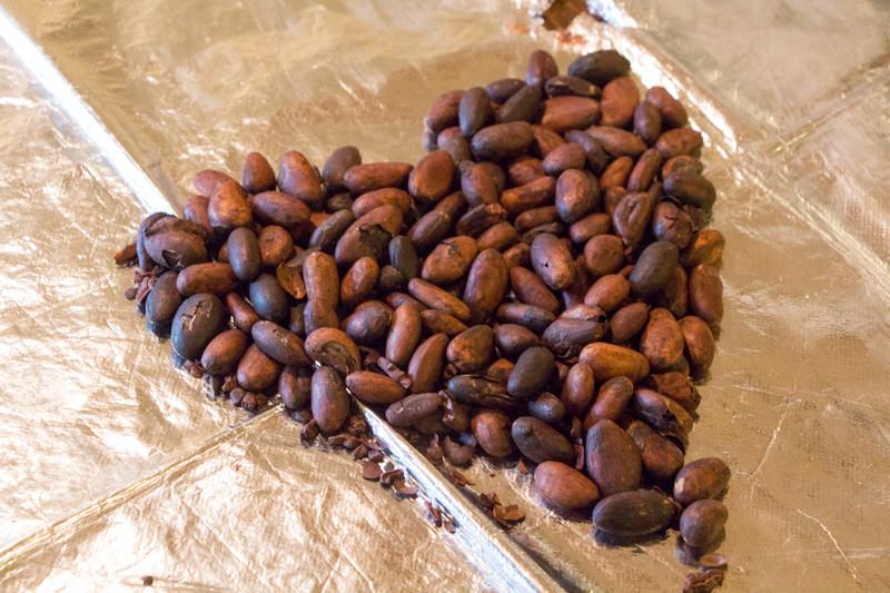 IMG_8596-morinone-cacao-labo-1