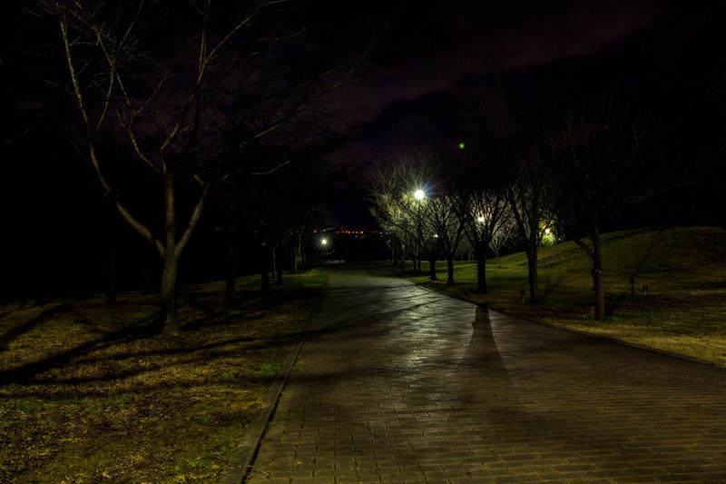 IMG_6798-takao-sakura-park-yakei