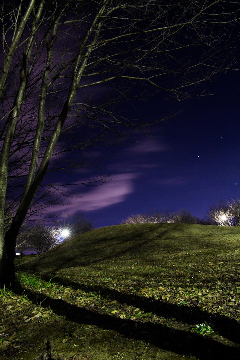 【夜桜撮影への挑戦1】一眼レフカメラ(EOS Kiss X7i)と三脚、レリーズ、25秒の長時間露出で真っ暗闇でもしっかり写す