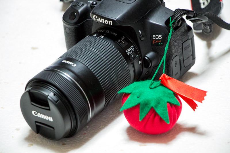 img_8564-ittan-tomatto