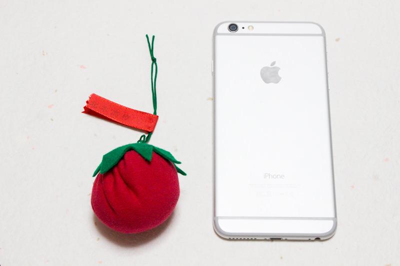 img_8578-ittan-tomatto