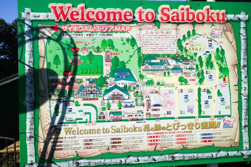 img_1627-saiboku-201612