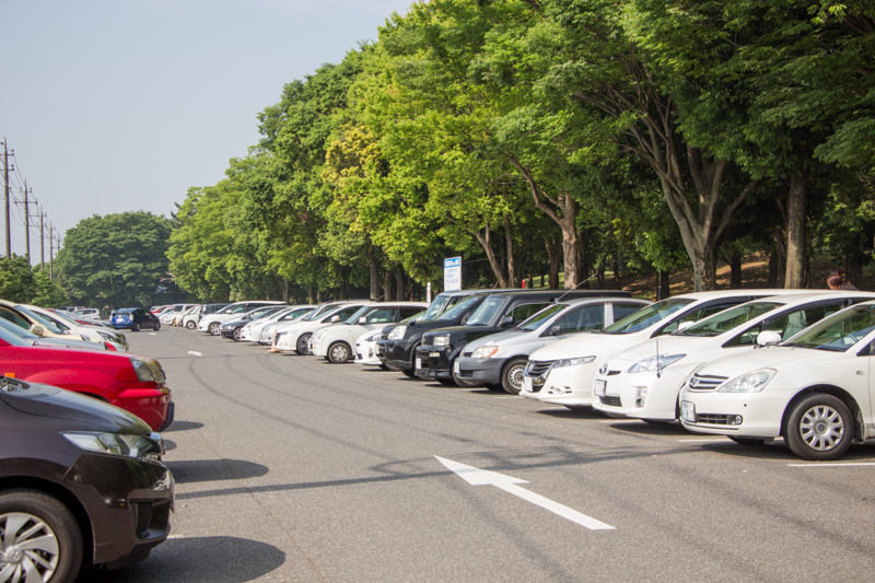 【縁側日和の駐車場ガイド】久喜菖蒲公園に300台・付近に路上駐車OK 何時に着けばいいの?バスでも行ける?