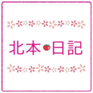 KitamotoNikkiLogo_1