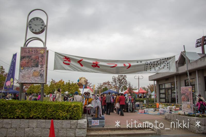 IMG_7507-kiku-matsuri