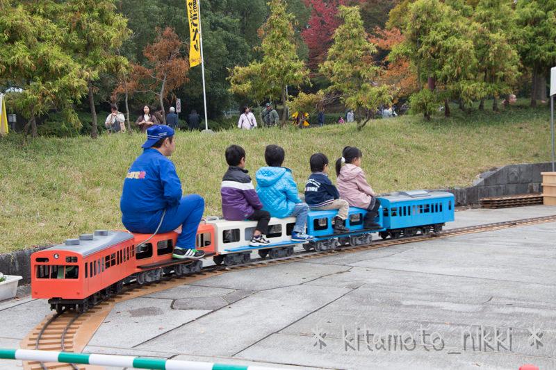 IMG_7912-kiku-matsuri-2