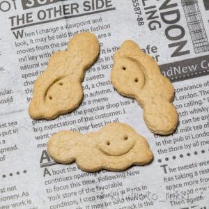IMG_0407-cle-cookie