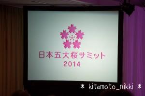IMG_3997-sakura-summit-2014