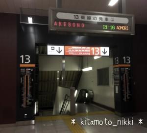 IMG_6961-akebono-chaos