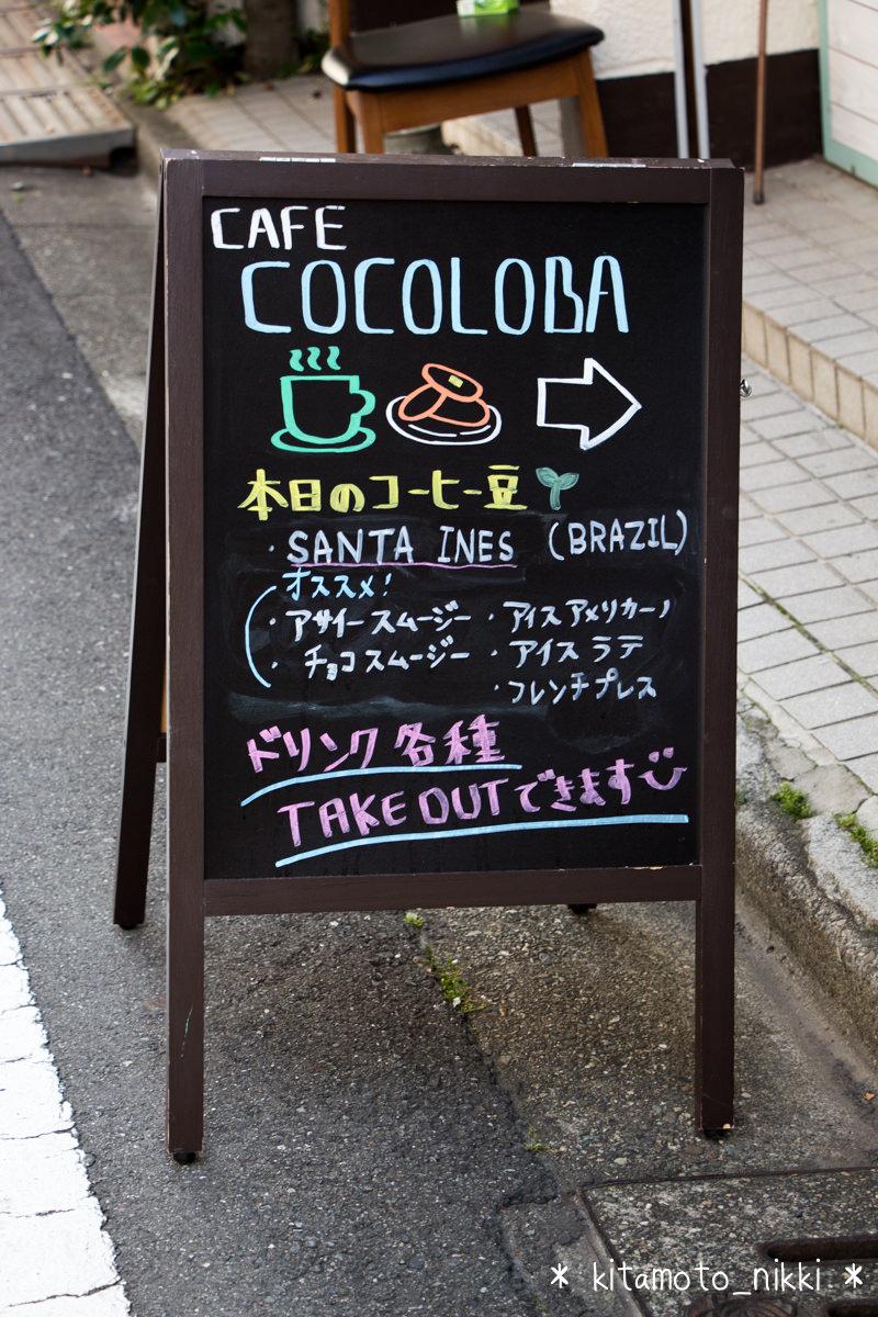 IMG_6938-cocoloba