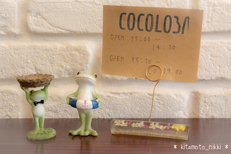IMG_3339-cocoloba