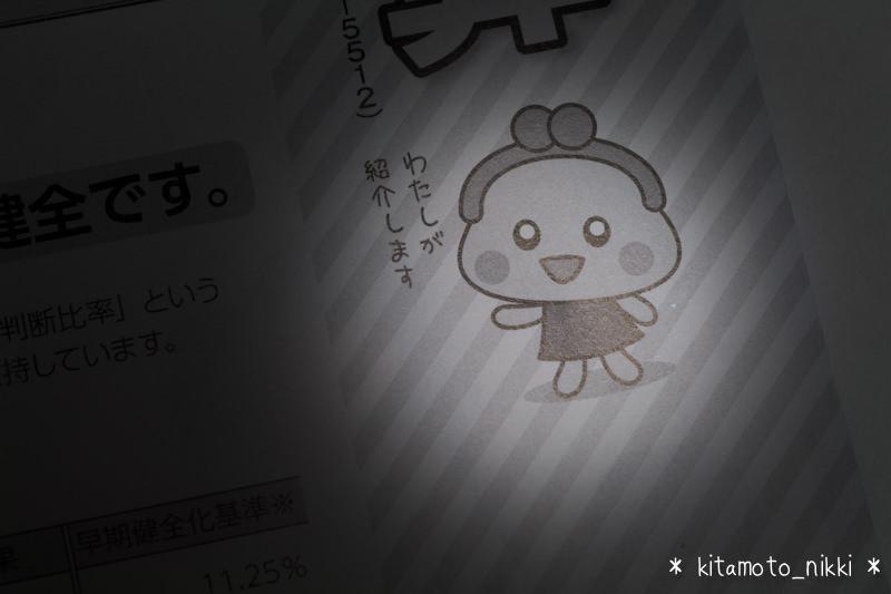 IMG_6564-koho-kitamoto-nazo-saifu