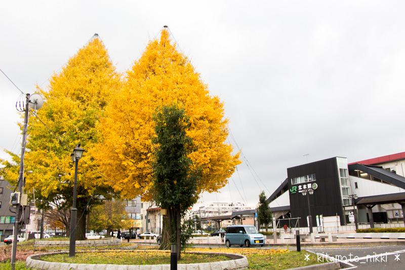 IMG_9643-kitamoto-irumi