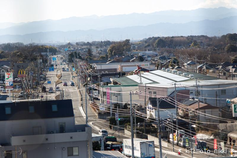 IMG_3829-benibana-walk