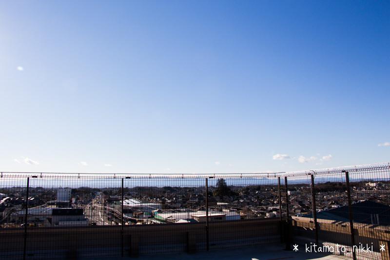 IMG_3831-benibana-walk