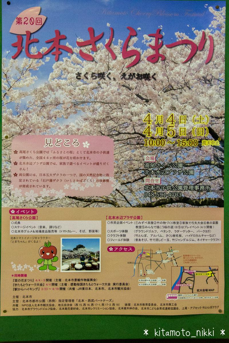 IMG_6599-kitamoto-sakura-matsuri