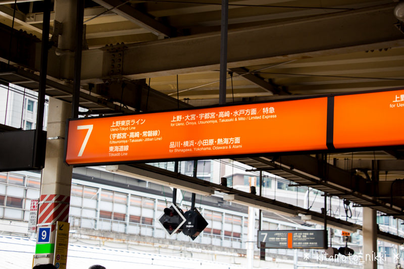 IMG_6813-tokyo-ueno-line-headmark-2