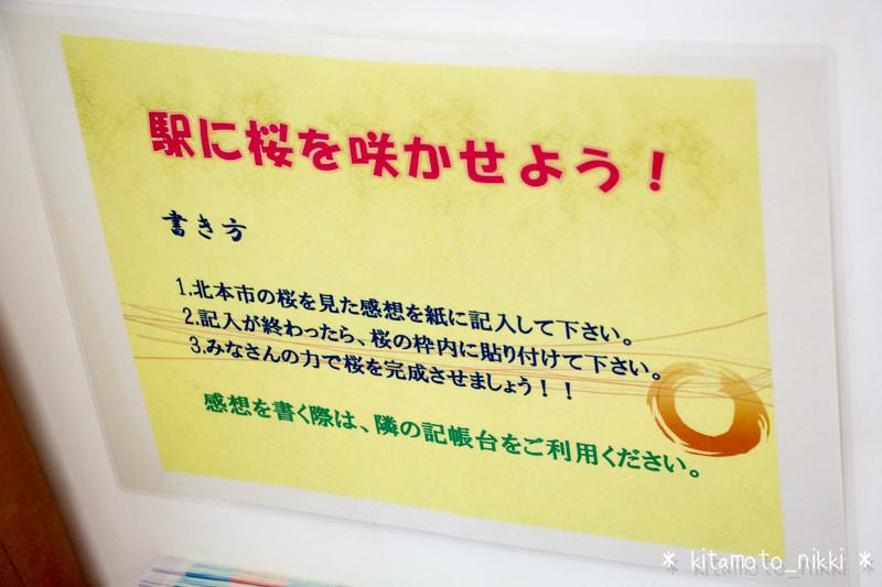 IMG_7795-kitamoto-station-sakura-sakaseyo