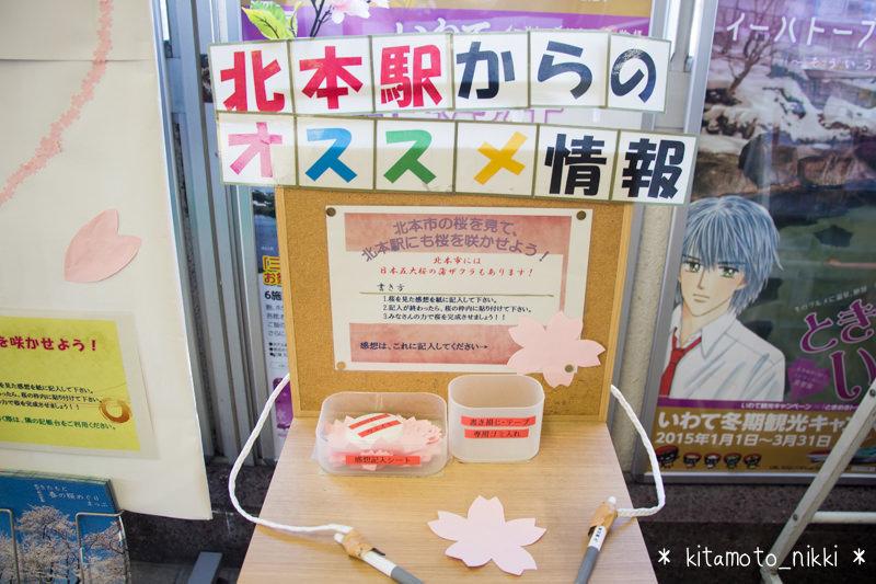 IMG_7796-kitamoto-station-sakura-sakaseyo