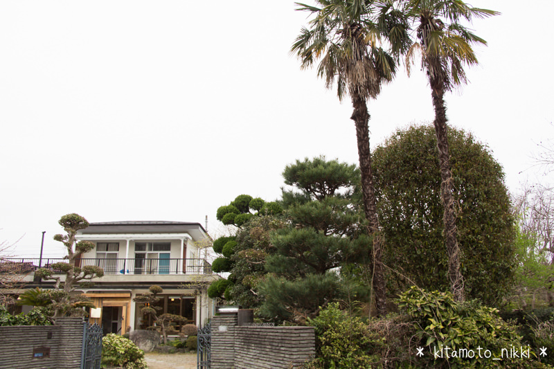 IMG_8176-atelier-house