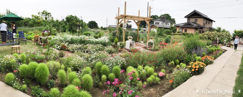 IMG_6024-open-garden