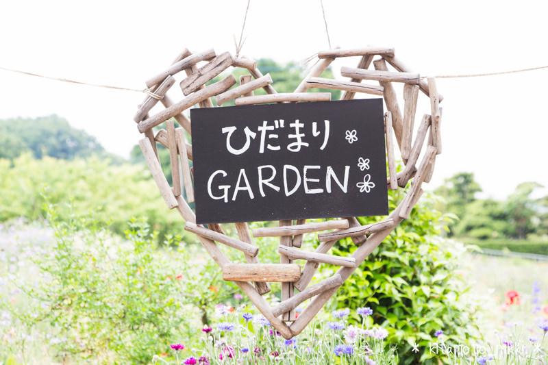 IMG_9845-open-garden