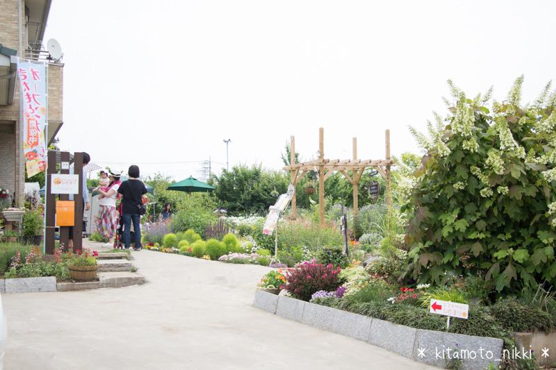 IMG_9864-open-garden
