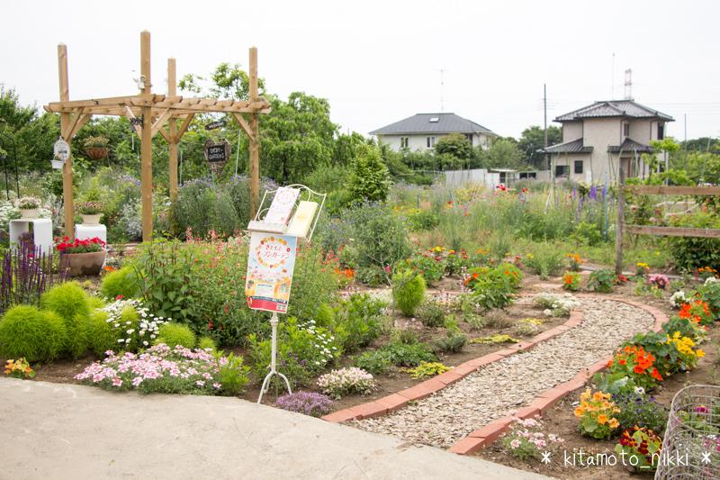 IMG_9932-open-garden