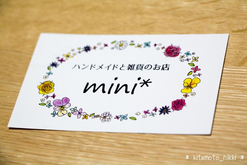 IMG_3798-mini