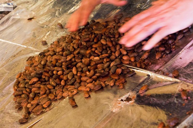 IMG_8605-morinone-cacao-labo-1