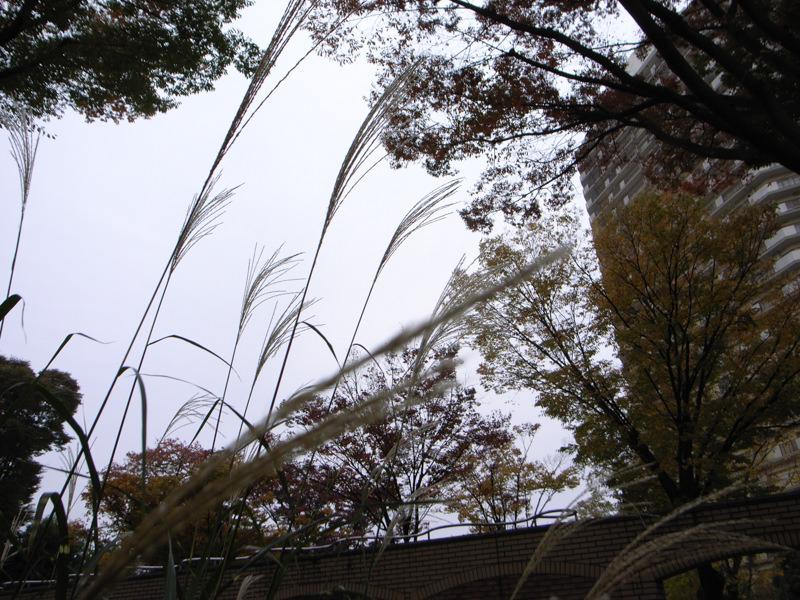 R0013965-okegawa-snap-3