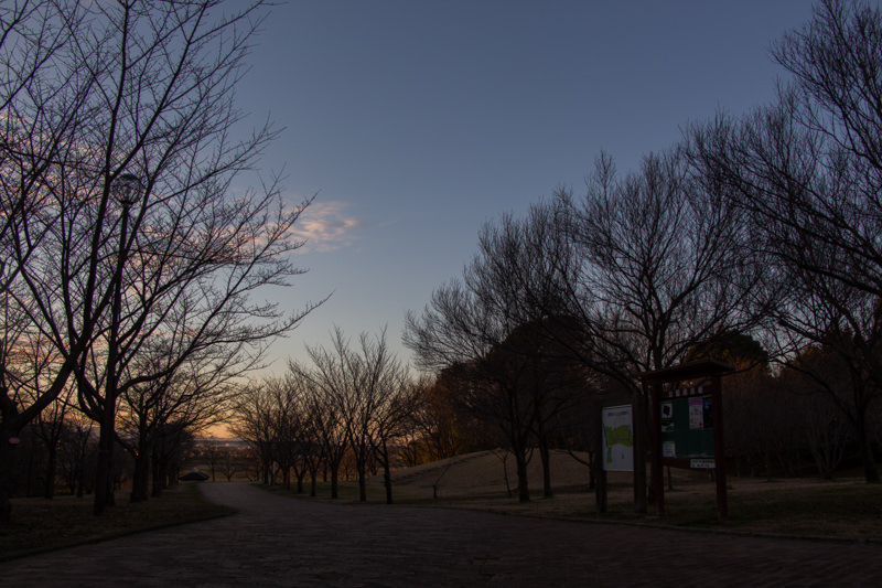 IMG_6519-takao-sakura-park