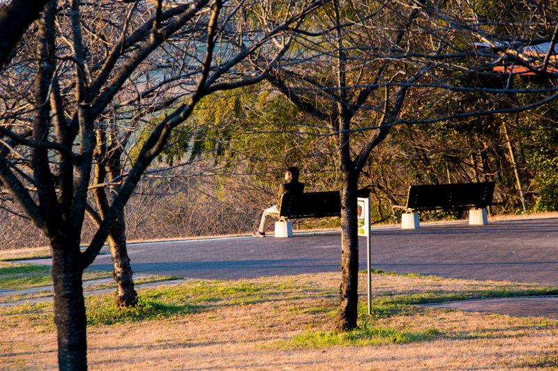 IMG_6525-takao-sakura-park