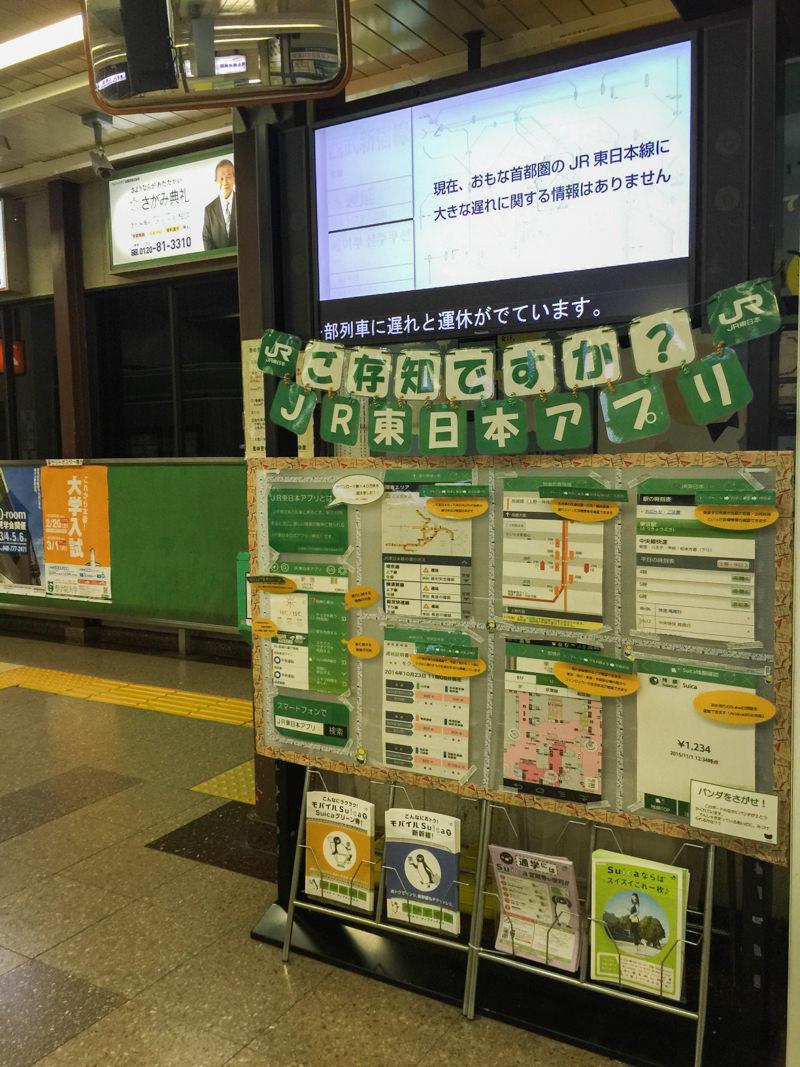 IMG_7092-okegawa-panda