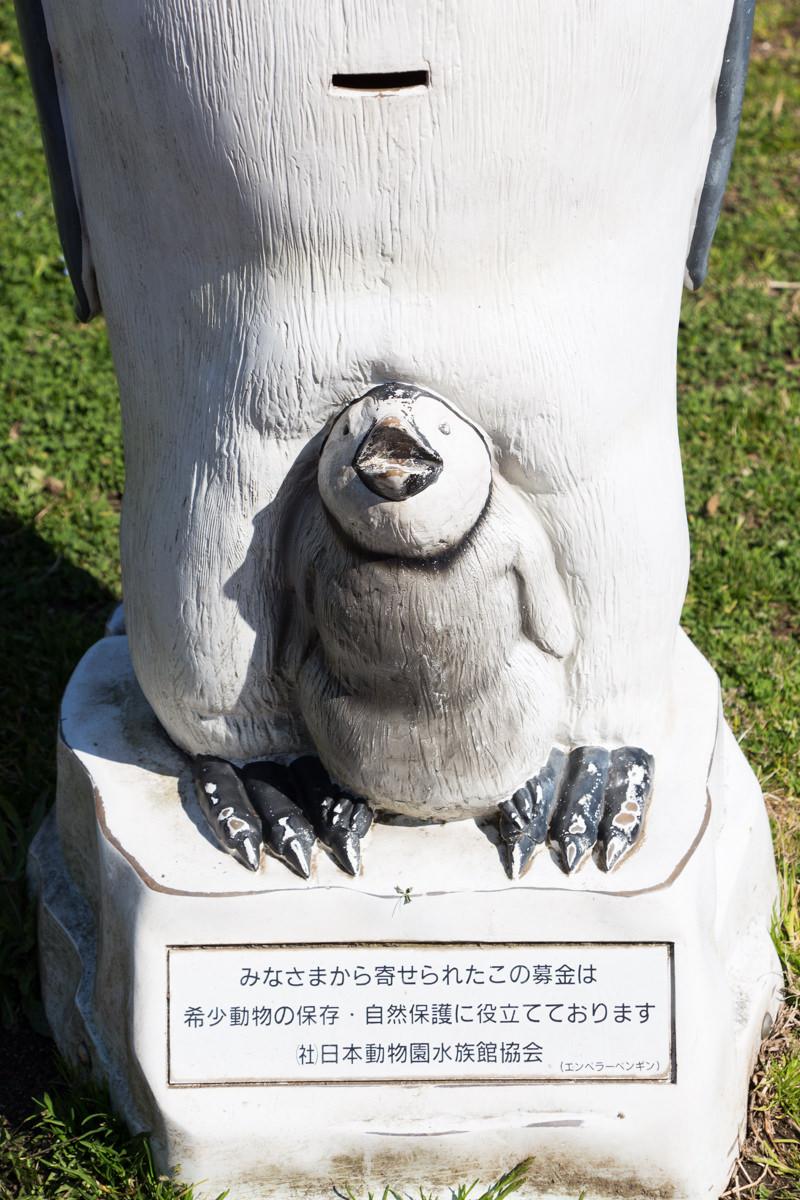 IMG_1347-saitama-suizokukan