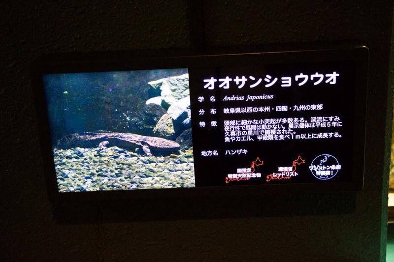 IMG_1421-saitama-suizokukan