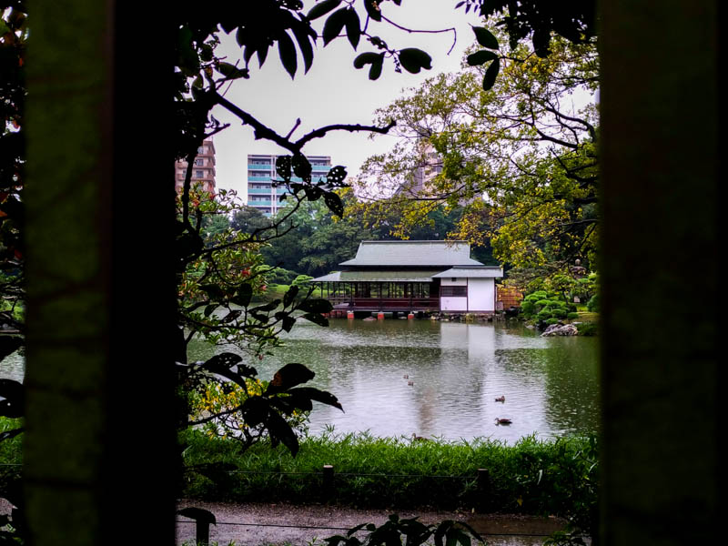 清澄庭園 涼亭への行き方ガイド