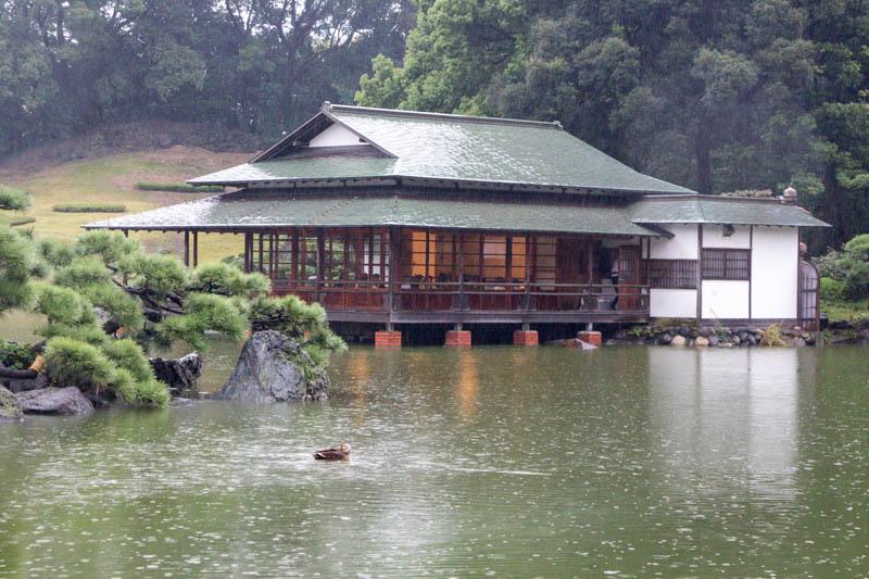 第6回スイーツ紅茶会 in 清澄白河 開催報告レポ